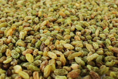Green raisin wholesale manufacturers