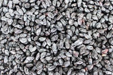 Blackcurrant Raisin Wholesale