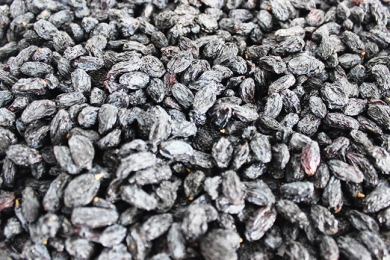 Blackcurrant Raisin Manufacturer Wholesale
